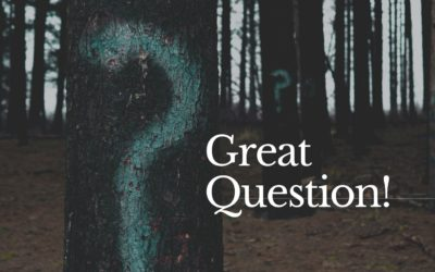Great Question! Follow-up Resources