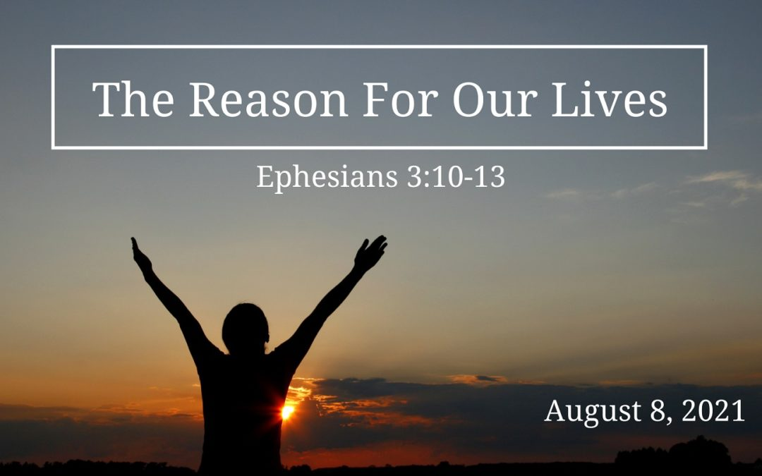 The Reason for Our Lives